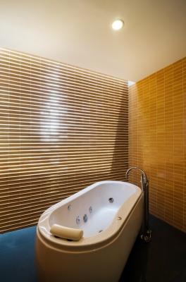 koupelna_freedigitalimages.net_Sira Anamwong